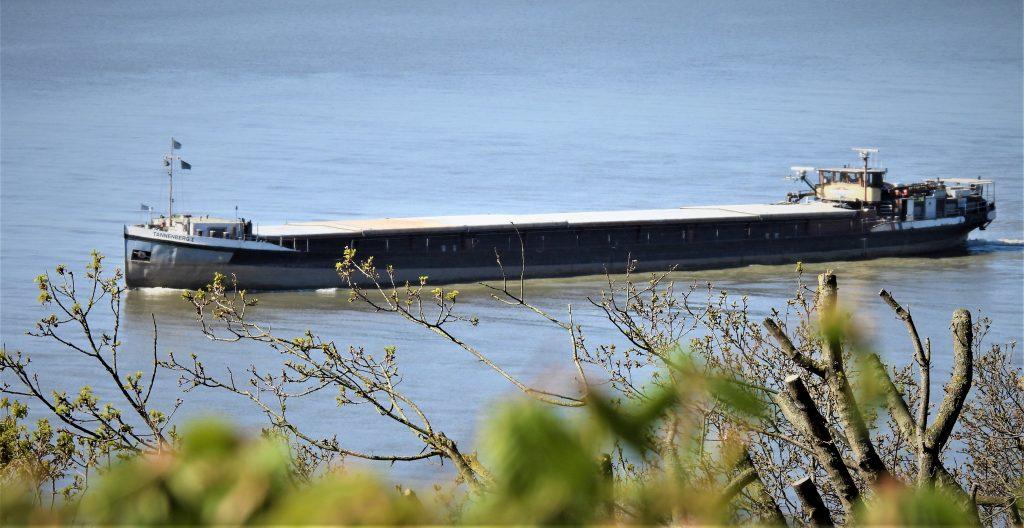 Das Flussschiff Tannenberg I strebt auf der Elbe zum Hamburger Hafen